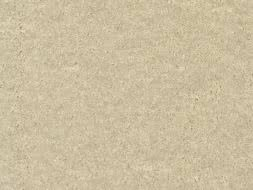 Velours Teppichboden Seduction hellbeige 500 cm